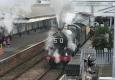 steam-train-paignton